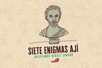 SIETE ENIGMAS (Diego Singer)