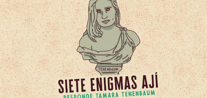 SIETE ENIGMAS (Tamara Tenenbaum)